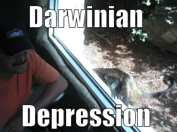 Darwinian Depression